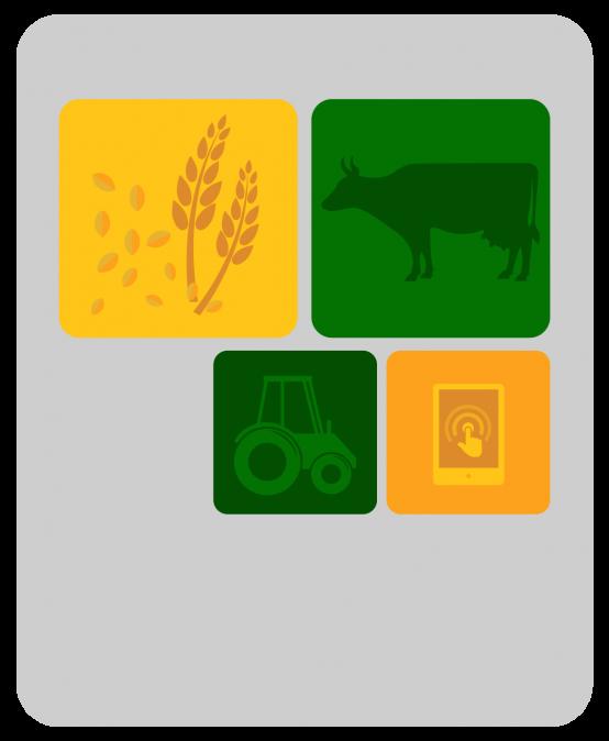Mestrado Profissional em Desenvolvimento Rural