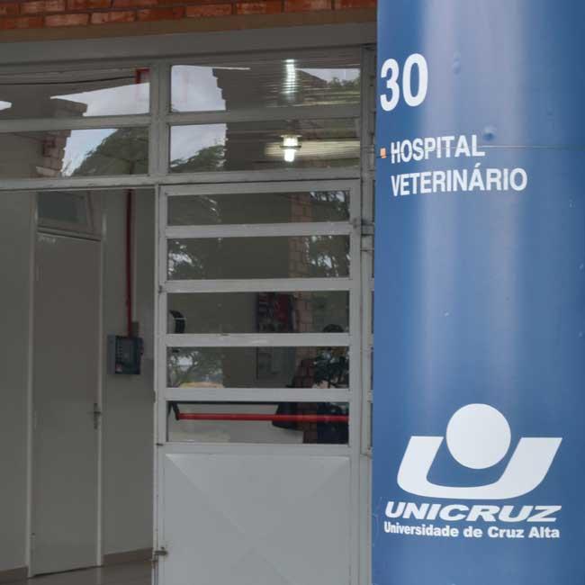 Hospital Veterinário de volta