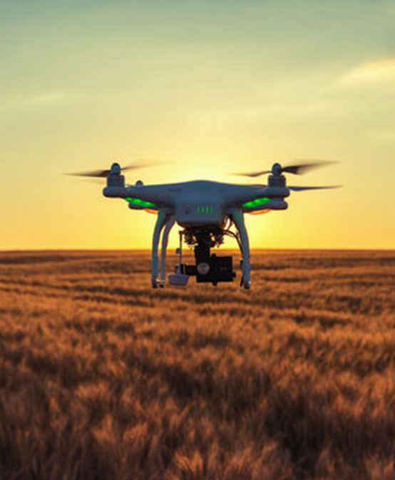 Processamento e Interpretação de Imagens de Aeronaves Remotamente Pilotadas na Agricultura II